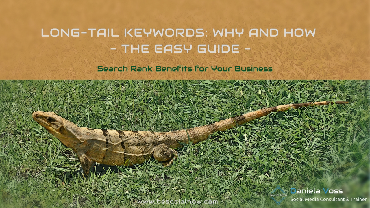 Long-Tail Keywords: Why and How – The Easy Guide